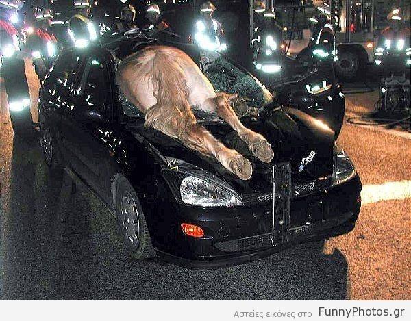 Άλογο εναντίον αυτοκινήτου