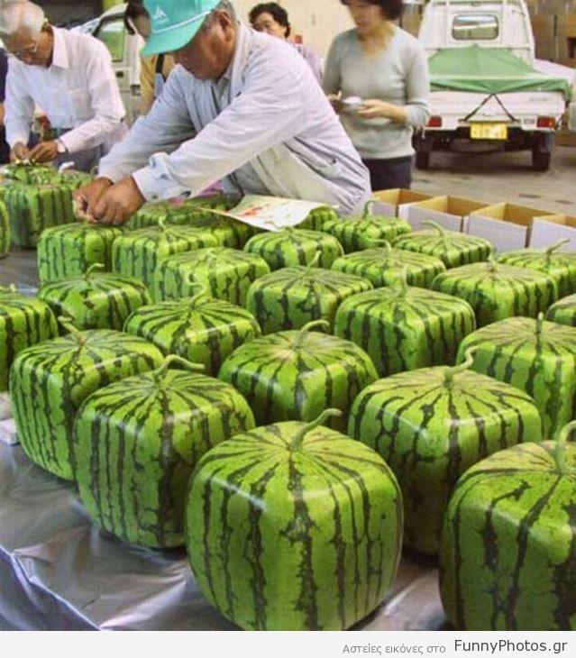 Καρπούζια στην Ιαπωνία