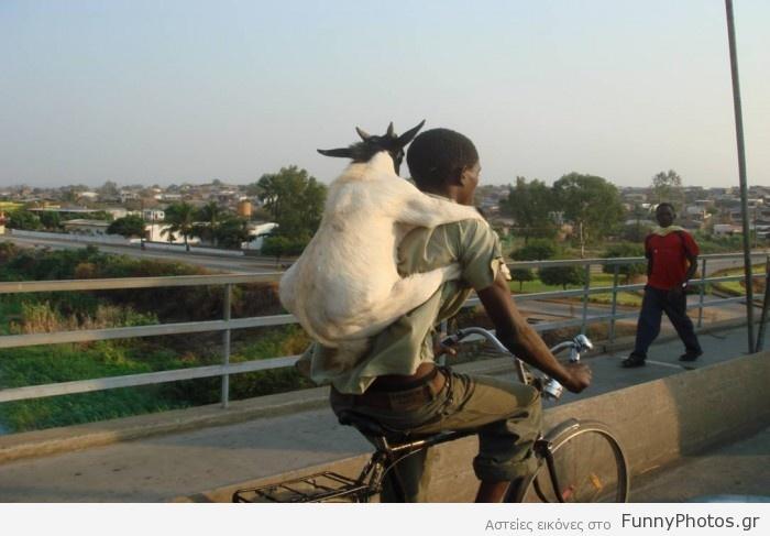Ποδηλατάδα με κατσίκα