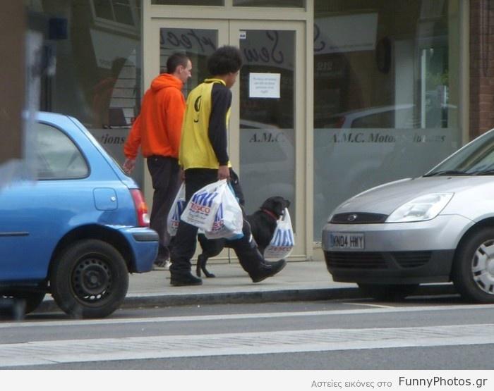 Σκύλος κουβαλάει τσάντες