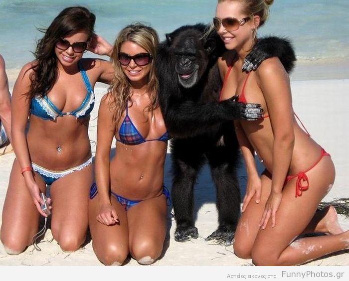 Χούφτωμα από πίθηκο